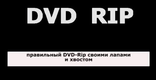 Видеокурс Как сделать DVD-Rip