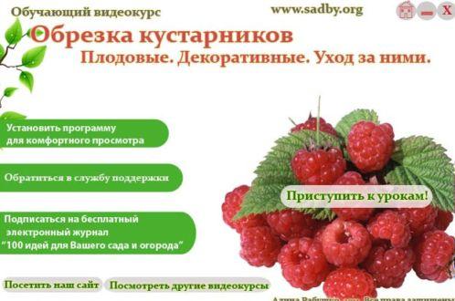 Видеокурс Обрезка кустарников : плодовые,  декоративные, уход за ними