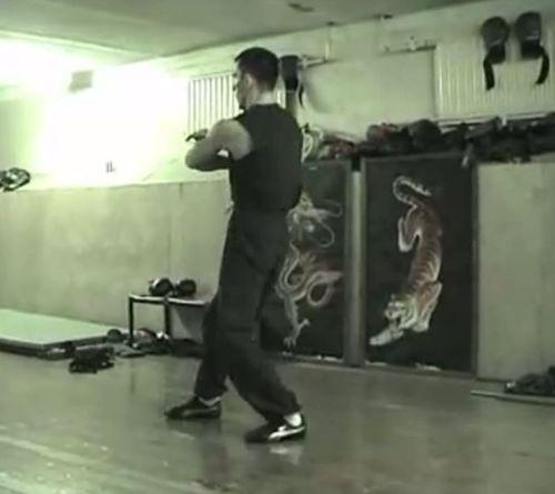 Видеокурс Вин Чунь